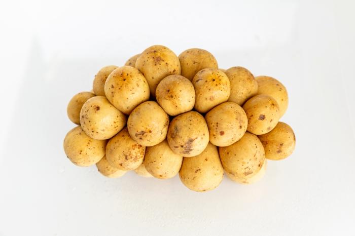 hellgelbe kartoffelsorte für ein rezept für eine cremige kartoffelsuppe