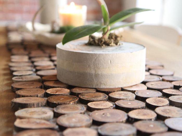 holzscheiben deko selber machen kleine holzscheiben tischdecke kerzen pflanzen