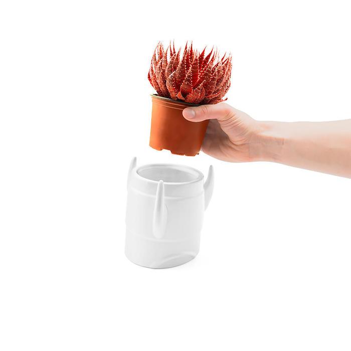 idee für geschenk für hobbygärtner eine hand mit einem weißen kleinen blumentopf
