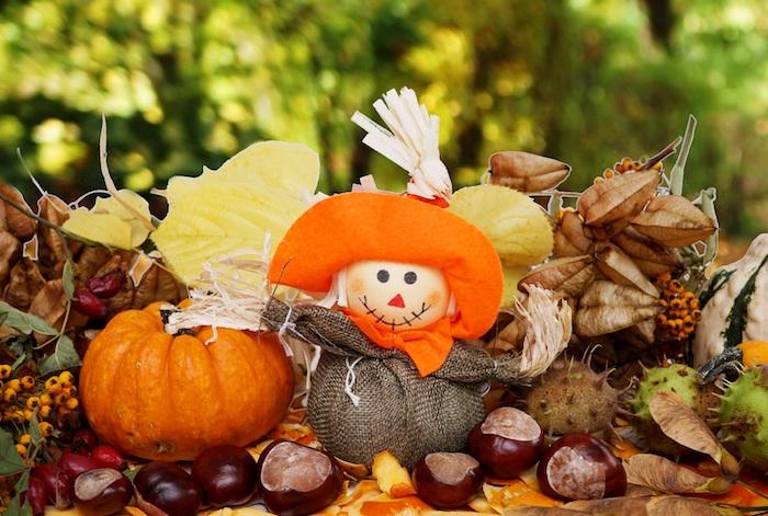 kastanien kaufen esskastanien als schmuck im herbst kürbis vogelscheuche figur in orange