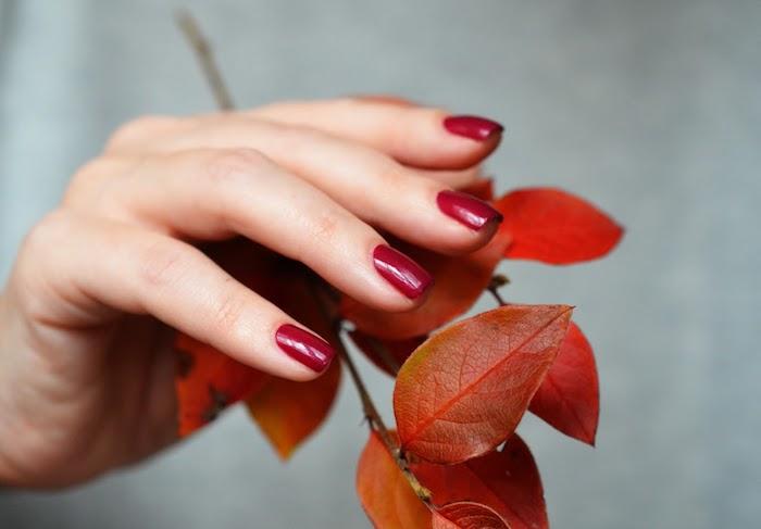 kleiner ast mit orangen blättern nageldesign herbst eine frau mit einem weinroten nagellack trends
