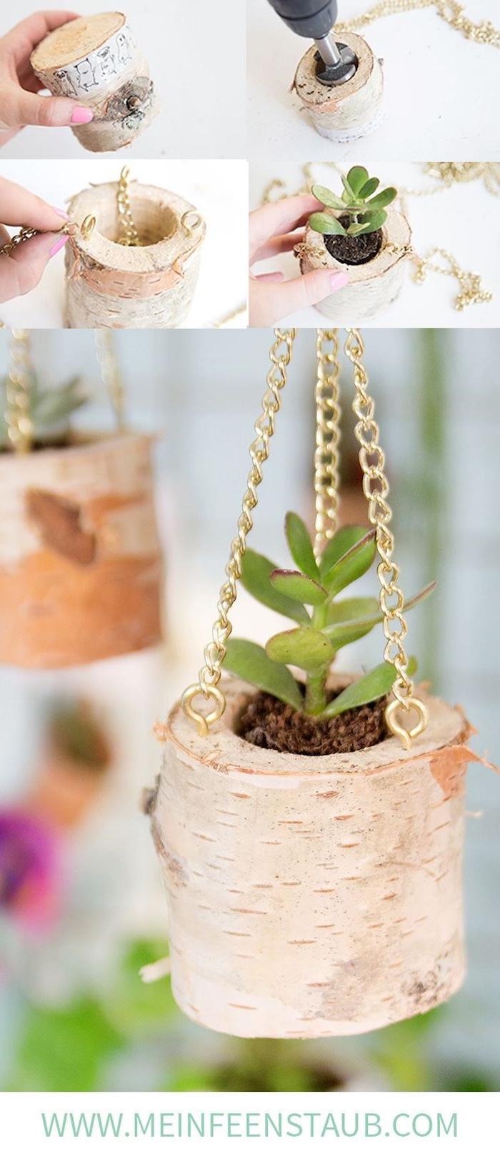kreativer pflanzer aus birkenholz kleine grüne kaktee birkenholz deko diy anleitung schritt für schritt erklärung pflanzenhalter selber machen