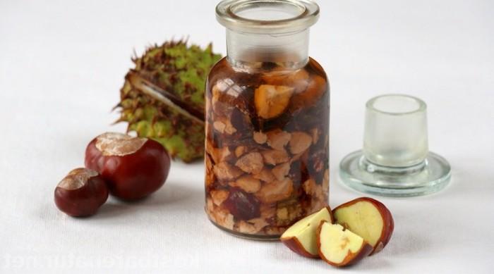 maronen rezepte kochen tinkturen mit kastanien gegen reumatismus und schmerzen