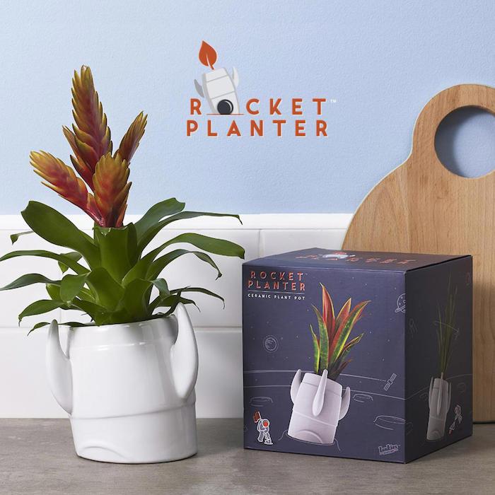 rocket planter mit einer grünen pflanze ideen für geschenke für die beste freundin ein holzbrett