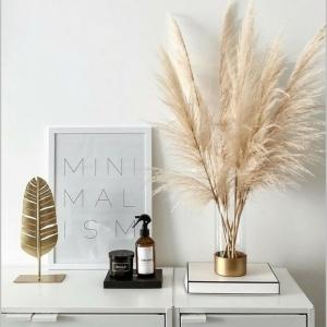 trockenblumen deko zimmergestaltung zimmerdekoration ideen trockgras weißer schrank zimmer dekoriren beispiele