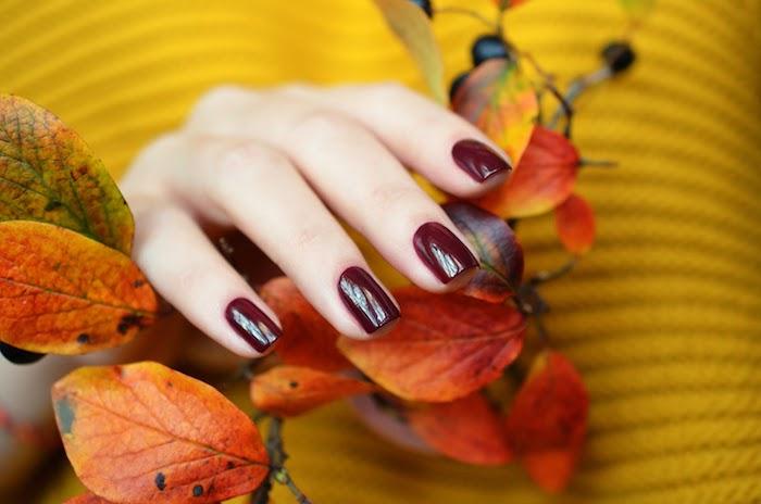 weinroter nagellack für den herbst eine frau mit einem gelben pullover ast mit orangen blättern im herst