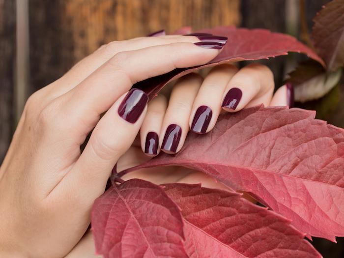zwei hände mit einem violetten nagellack ein als mit großen roten blättern ideen für nageldesign herbst
