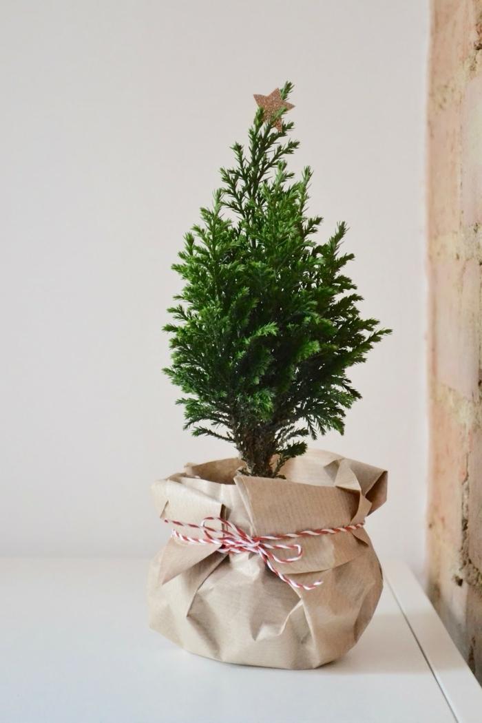 bastelideen für weihanchten last minute geschenke weihanchtsgeschenke ideen kleiner baum grüne pflanze dverpacken