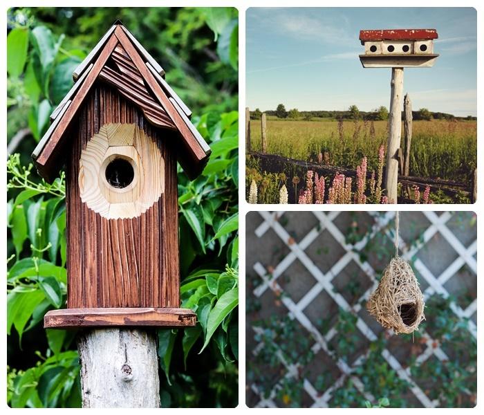 vogelschtuz tipps vogelhäuschen verschiedene designs garten gestalten ideen