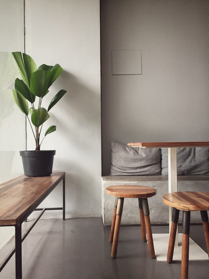 zimmerpflanzen als deko zimmer dekorieren ideen tipps für einwohnliches zuhause