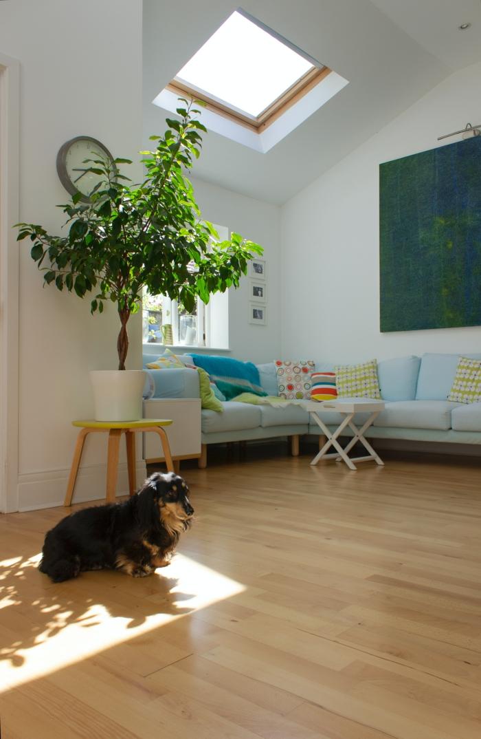 dekoratione grüne pflanze kleines wohnzimmer einrichten dachfenster austauschen großes gemälde an die wand süßer schwarzer hund