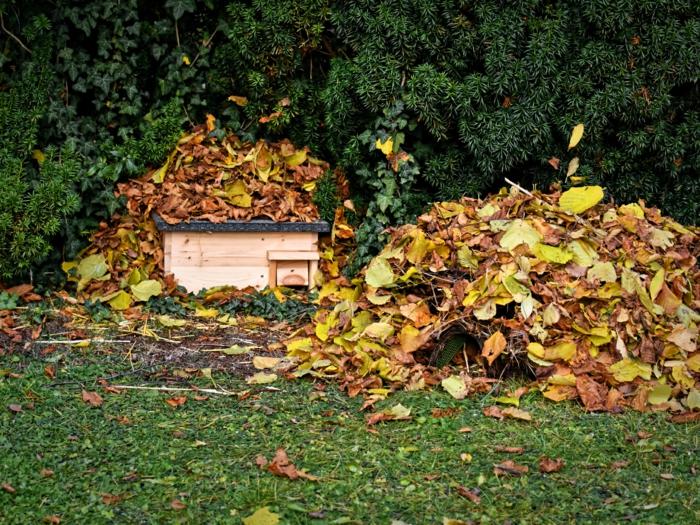 katzensicheres igelhaus bauen igelfutterhaus zwei igelhäuser igel winterschlaf im garten schützen unter blätter zwiegen stecken
