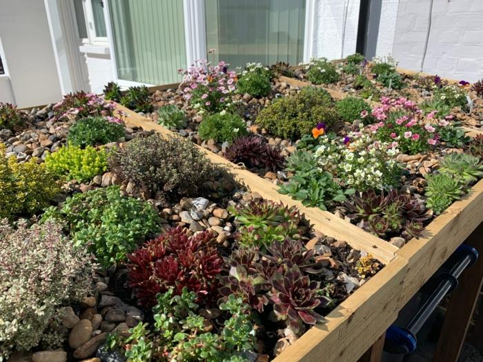 mülltonnenbox selber bauen mülltonnenbox bepflanzbar mülltonnenverkleidung holz blumen.pflanzen