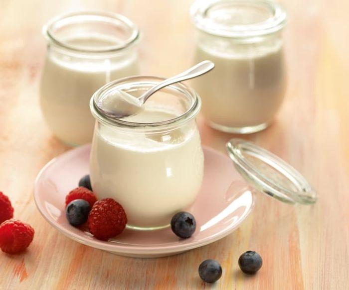 naturjoghurt selber machen gesundes rezept mit kokosmilch kokosjighurt selbst herstellen