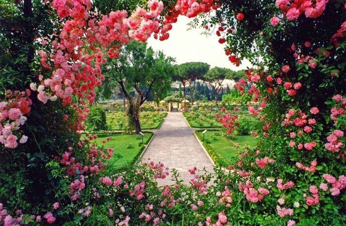 rosen schneiden im herbst schritt für schritt großer garten mit vielen blumen