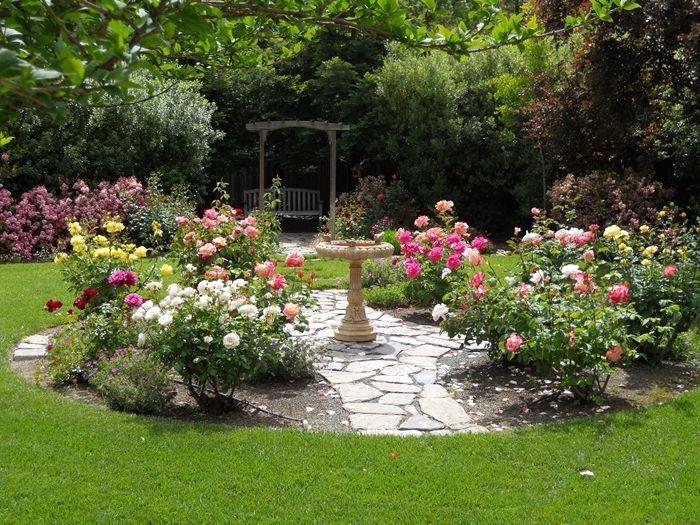 verblüffende rosen abschneiden garten gestalten moderne gartengestaltung rosenbüsche