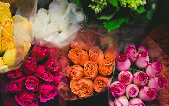 wann rosen schneiden hübsche blumen blumensträuße in verschiedenen farben