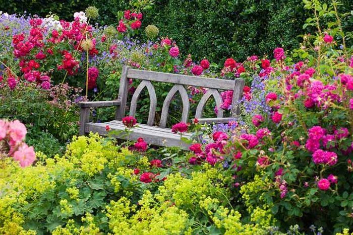 wann schneidet man rosen garten gestalten gartentipps weißer bank aus holz holzbank rosa blumen