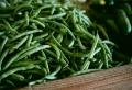 Der Anbau von Gemüse im Hausgarten kann Ihre Ernährungsbedürfnisse erfüllen