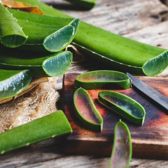 aloe vera blätter geschnitten in kleinen stückchen aloe vera haut gel verwenden