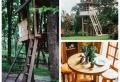 Baumhaus selber bauen: Hilfreiche Hinweise und Tipps