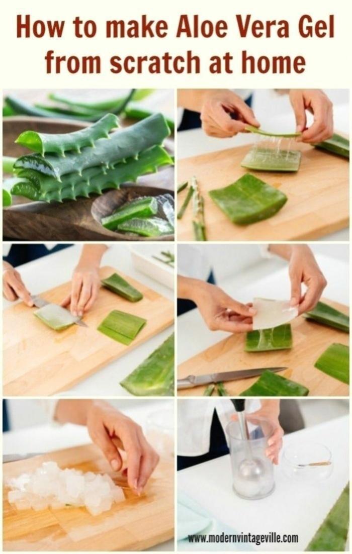 diy anleitung schritt für schritt aloe vera pflanze pflege schneiden wie schneide ich aloe vera pflanze