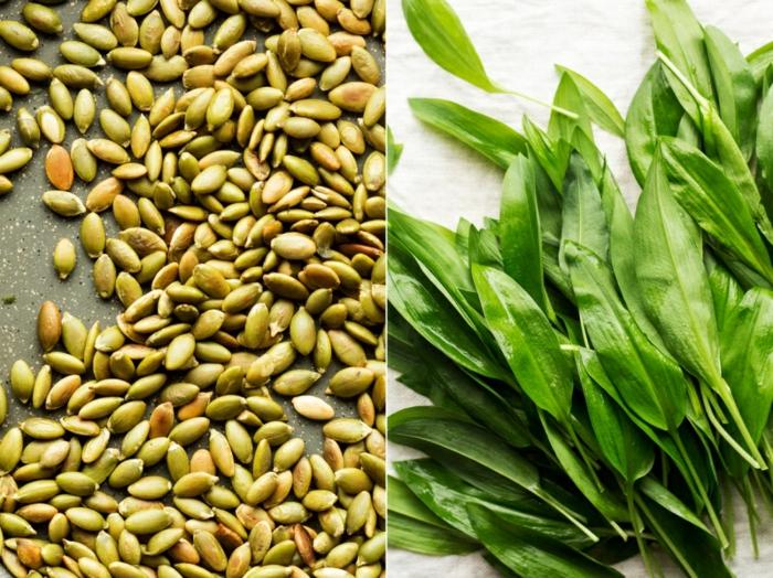 ein bärlauch pesto selber machen die zutaten für bärlauch pesto grüne blätter und kerne