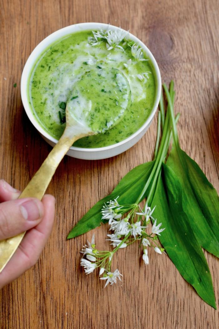 frische grüne bärlauch blätter eine hand mit löffel rezepe mit bärlauch