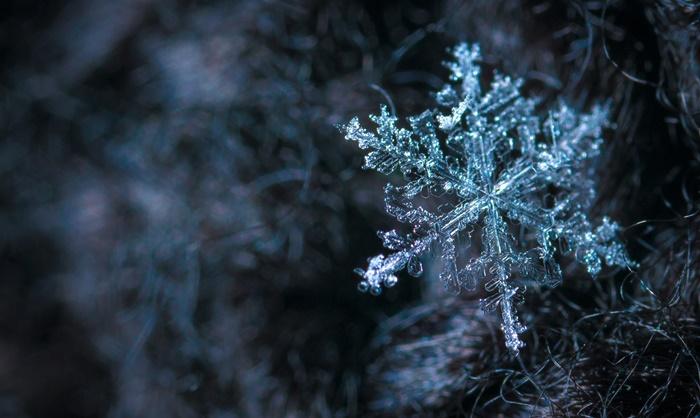 frostshaden am gebäude vermeiden und versichern wohnung frostsicher machen