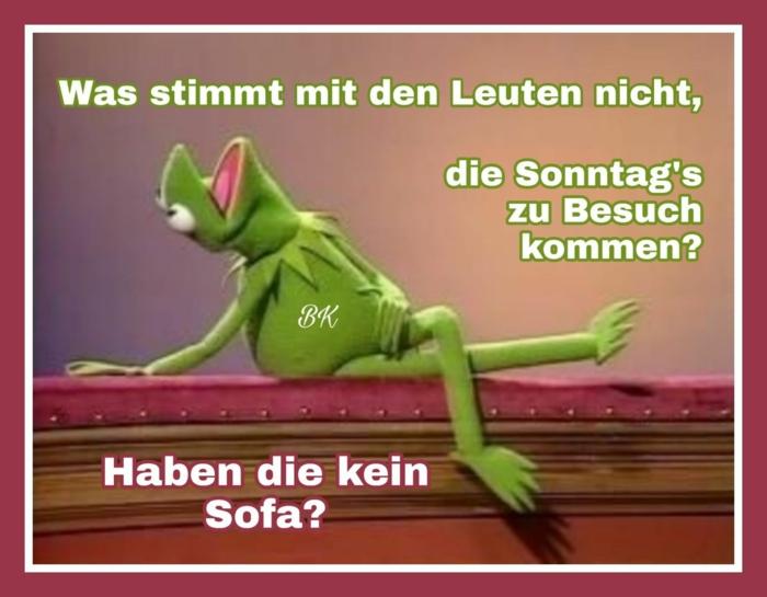 grüner frosch kermit der frosch die muppet show lustige bilder mit sprüchen zum totlachen witzig