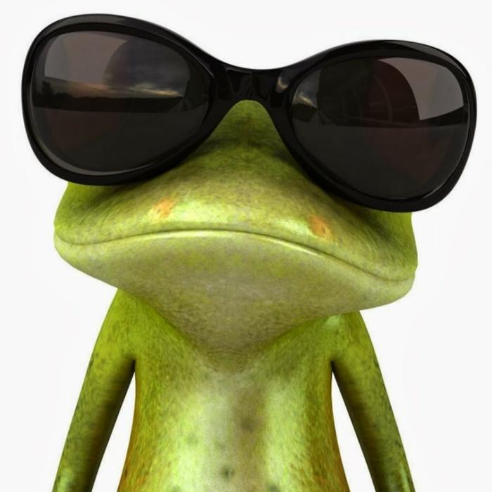 grüner frosch mit großen schwarzen sonnenbrillen lustige profilbilder ideen witzige fotos mit tieren.
