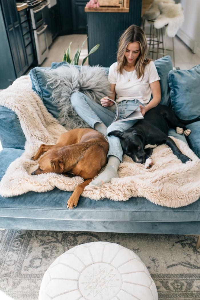 leger angezogene junge frau auf einem blauen sofa mit zwei hunden scandi style wohnen ideen und inspiration