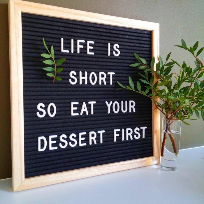 life is short so eat your dessert first motivierende sprüche lustige bilder zum totlachen vase mit grüner pflanze