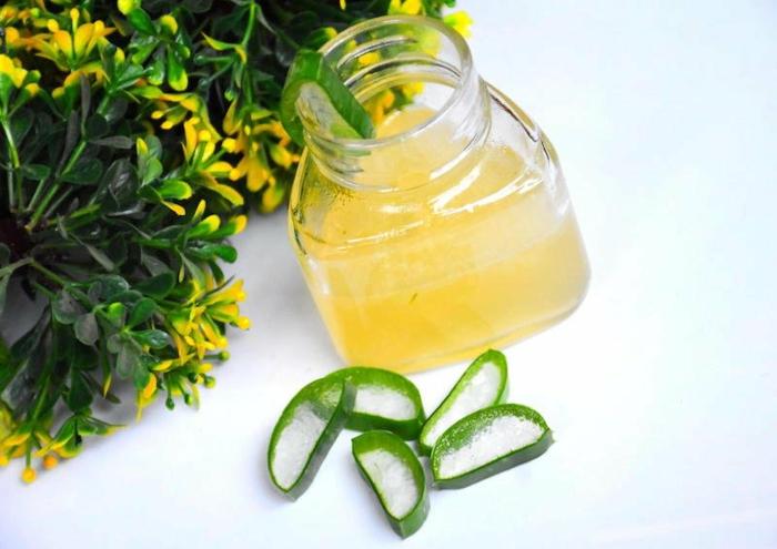 natürliches aloe vera gel selber machen zu hause tipps und rezepte für haarmasken und gesichtsmasken