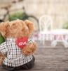 valentinsgrüße für freunde valentinstag geschenk für frau valentinstag geschenke plüschtier bär mit blumen