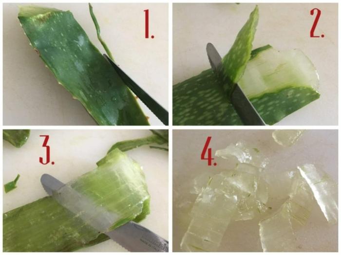 wie bekomme ich das gel aus der aloe vera diy anleitung schritt für schritt aloe vera gel selber machen