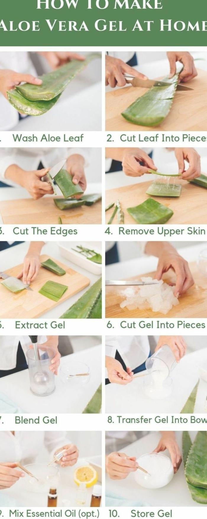 wie sie aloe vera gel selber machen können diy anleitung schritt für schritt aloe pflanze schneiden