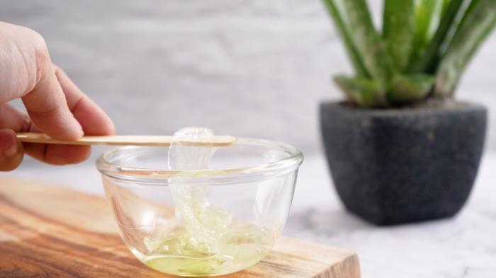 wie sie aloe vera gel selber machen können leichte rezepte zubereiten zuhause