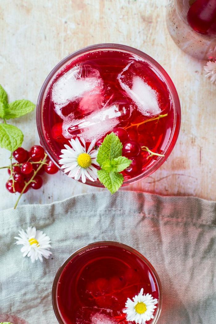 zwei gläser mit einem roten eistee mit kleinen weißen blumen und frischer pfefferminze