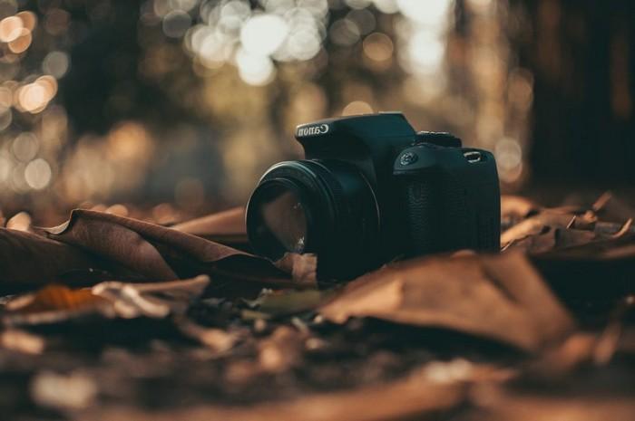 60 geburtstag geschenk für mann geburtstag 60 mann geschenk 60 geburtstag frau fotokamera schenken kamera im wald blätter