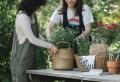 Den Garten anlegen – was sollen Sie dabei unbedingt beachten