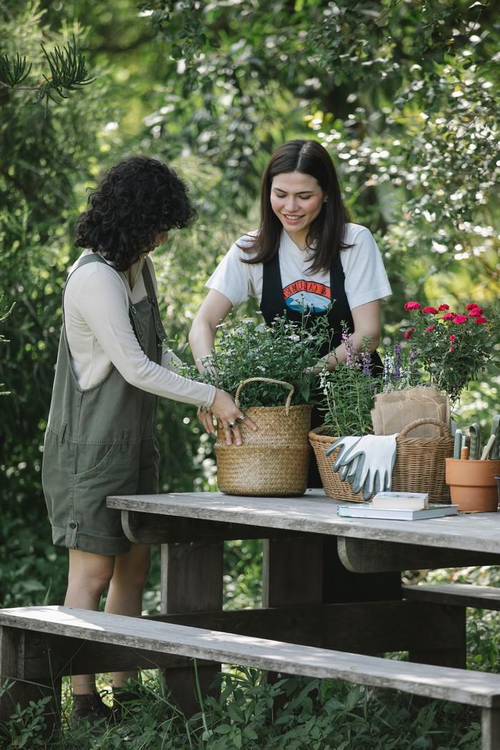 bloombux pflanzen den garten anlegen zwei mädchen körbe bepflanzen risch grünen garten