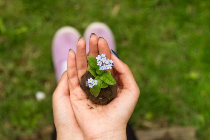 den garten bepflanzen blumen wählen frau hält blume in handfläche weiße blume rasen
