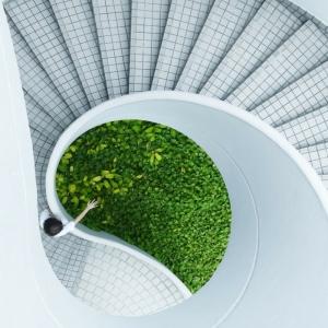 Wenn Architektur im Dienste der Umwelt steht