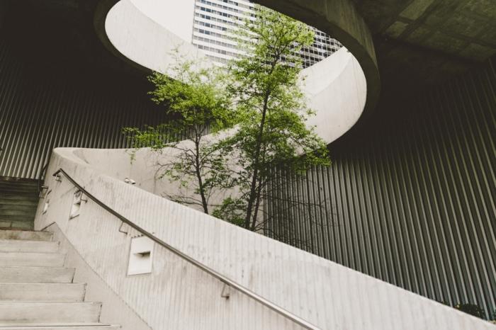 nachhaltige architektur kleiner grüner baum in einem neuen gebäude natur behalten