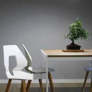 Nachhaltige Wohntrends und Möbel für Ihr Wohnzimmer