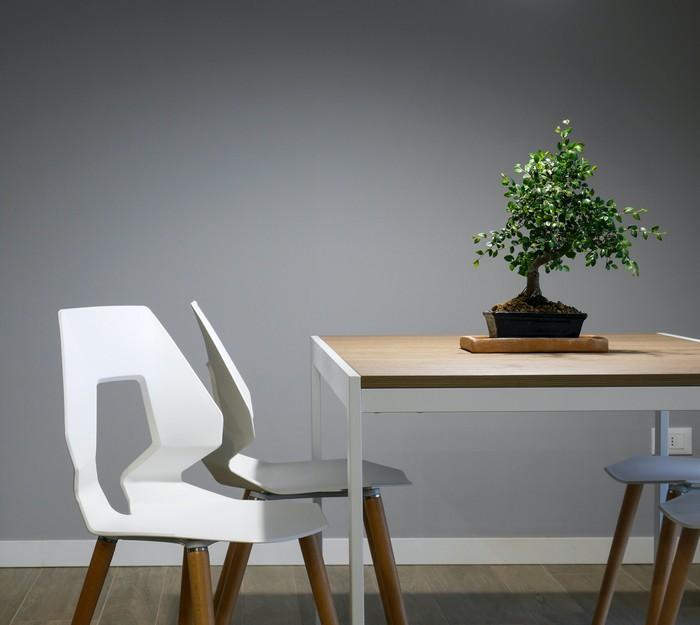 nachhaltige wohntrends umweltfreundliche einrichtung möbeln weiße stuhl holz metall tisch