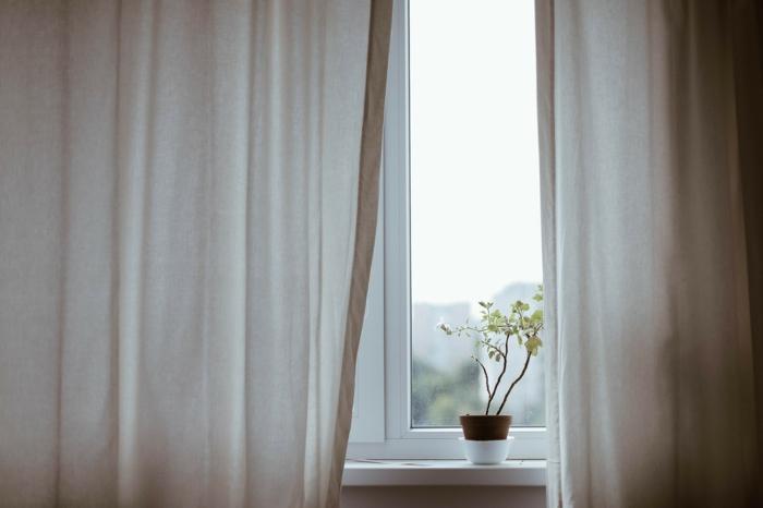 weiße gardinen schöne pflanze am fenster kunststoff fenster kaufen aus polen informationen