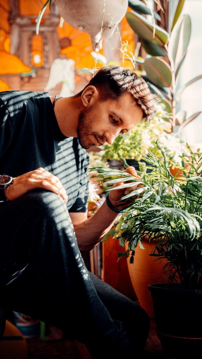 pflanzen im zimmer gießen mann in schwarzer bluse schaut blumentöpfe grüne pflanzen plantsome de