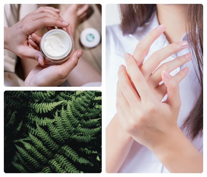 körperpflege mit felce azzurra creme hauscreme grüne blätter hautschönheit lange behalten